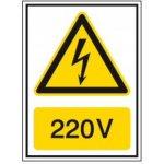 BRADY 251610-Waarschuwingspictogram - Voltagepictogrammen - 220 V-klium